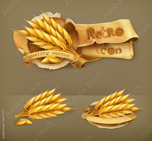 Wheat, retro vector icon