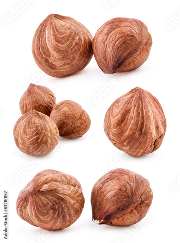 Collections of Hazelnuts Isolated on white