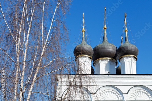 white birch and white walls of russian church