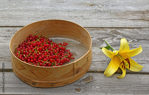 Sieve with freshly picked red currant berries and yellow lily