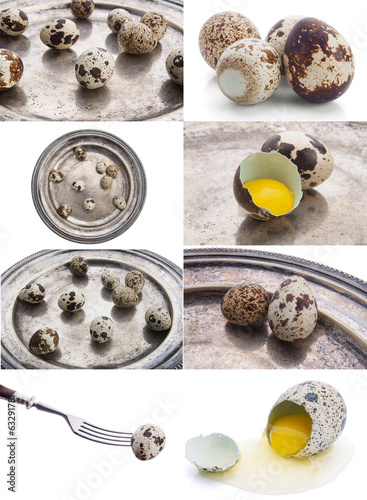 a collage of nine pictures of quail eggs
