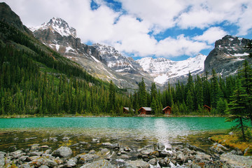 Lake Ohara, Yoho national park
