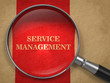 Service Management - Magnifying Glass.