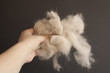 Pet hair