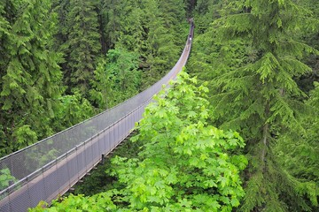 Capilano suspension bridge. North Vancouver.