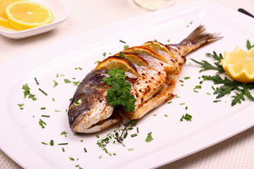 Grilled sea bream fish, lemon, arugula on white plate
