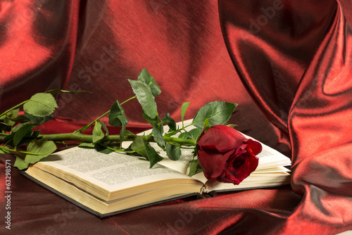 red rose lies on the open book