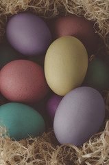Painted Easter Eggs Nesting - Cross Processed