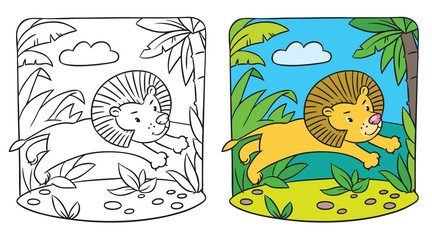 Little lion coloring book