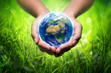 earth in hands - grass background - environment concept - Europe © Romolo Tavani