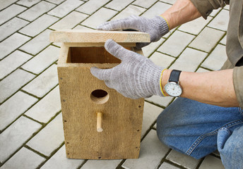 Making  birdhouse