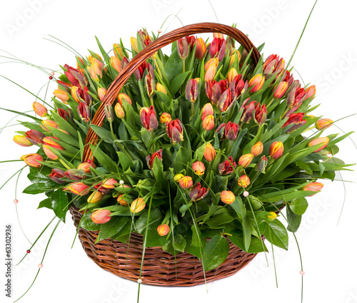 Natural tulips in a basket