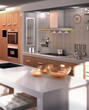 Modern Kitchen Project (focus)