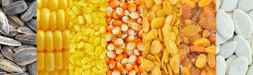 Corn, soybeans, raisins, sunflower seeds, pumpkin seeds ,Grains