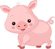 Farm animals. Pig