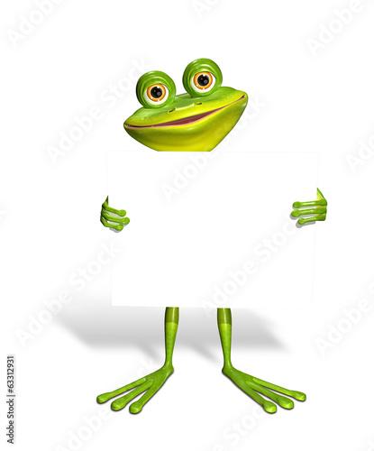 Fotobehang Kikker Frog and white background