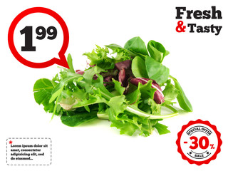 Salad rucola, frisee, radicchio and lamb's lettuce