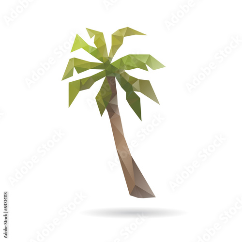 Summer palm abstract isolated on a white backgrounds