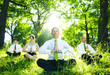 Business People Meditating In The Woods