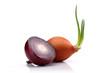 Half Onion and Onion