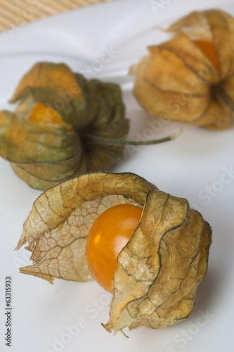 Physalis or Chinese Lantern