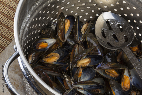 Cooking Fresh Mussels