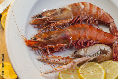 Seafood - Tiger Prawns and Langoustine