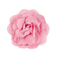 pink brooch flower isolated on white background