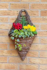 wall mounted hanging basket with spring flowers