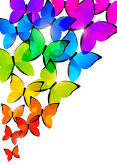 Rainbow butterflies for Your design