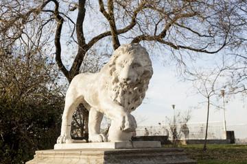 Lion Architecture