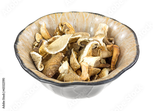 White Oyster Mushrooms In Bowl Side View