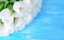 "Постер, картина, фотообои ""Beautiful bouquet of white tulips on blue background"""