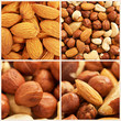 Nuts background set