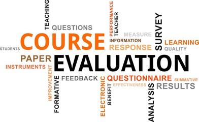 word cloud - course evaluation