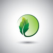 green leaf icon & circle - eco concept vector.