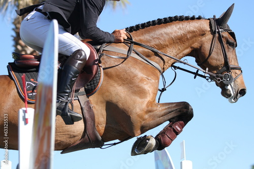 Aluminium Paardensport Beim Springturnier