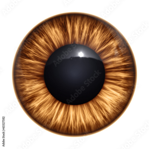canvas print picture brown eye texture