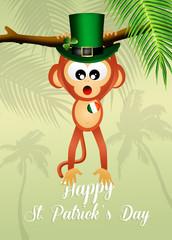 monkey for St.Patrick's day