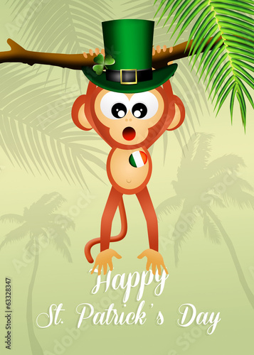 monkey for St.Patrick's day