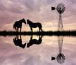 Obrazy na płótnie, fototapety, zdjęcia, fotoobrazy drukowane : horses in the farm