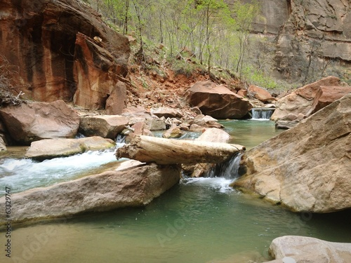 Zion's Virgin River