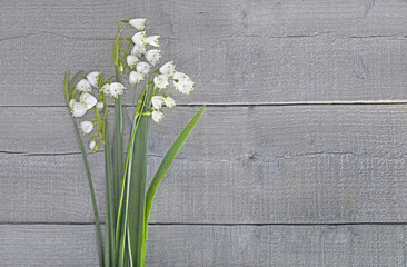Bouquet of snowdrops on grey wooden surface
