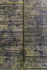 old wood planks with moss