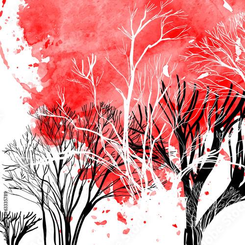 streszczenie-sylwetka-drzew