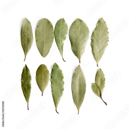 Aromatic dry bay leaves on white background.