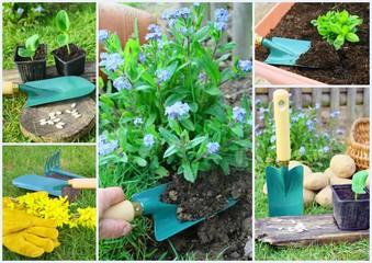 composition plantation,outil,jardinae
