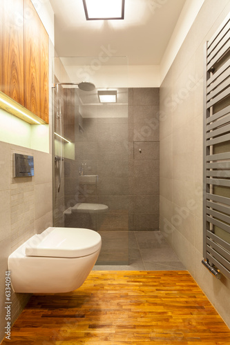 canvas print picture Small toilet with shower