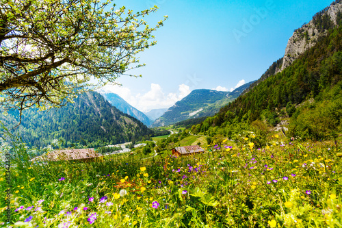 canvas print picture Beautiful sunny scenery near Alps