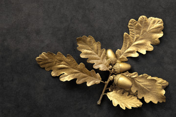 Golden Oak Leaf Beauty